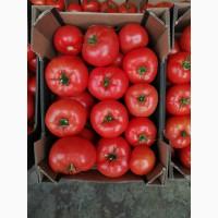 Куплю помидоры