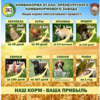 Комбикорм полнорационный, для всех видов с/х животных, птиц, и рыб